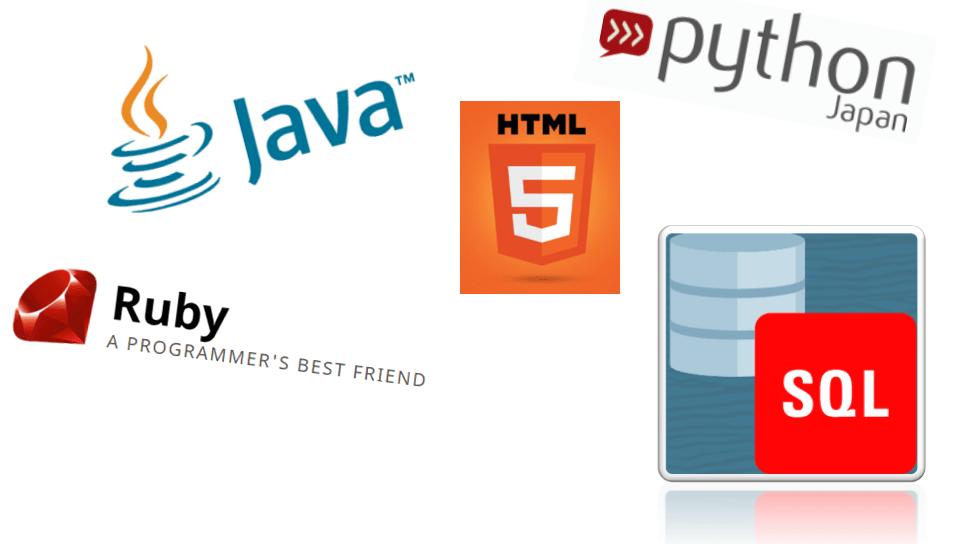 プログラミング言語種類