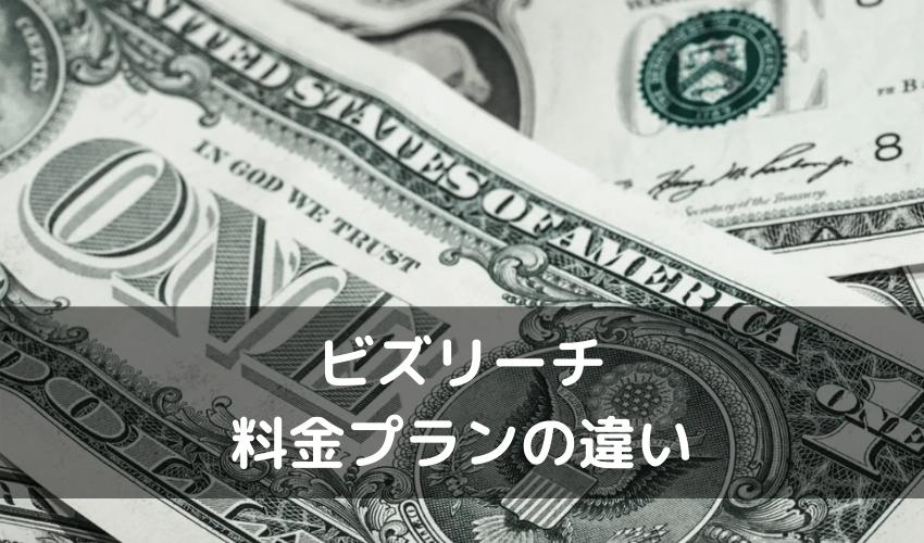 ビズリーチ 評判_料金プランの違い